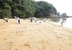 浜のクリーン作戦